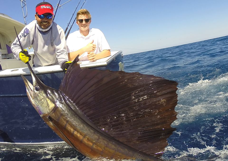 Dylan Falls First Sailfish